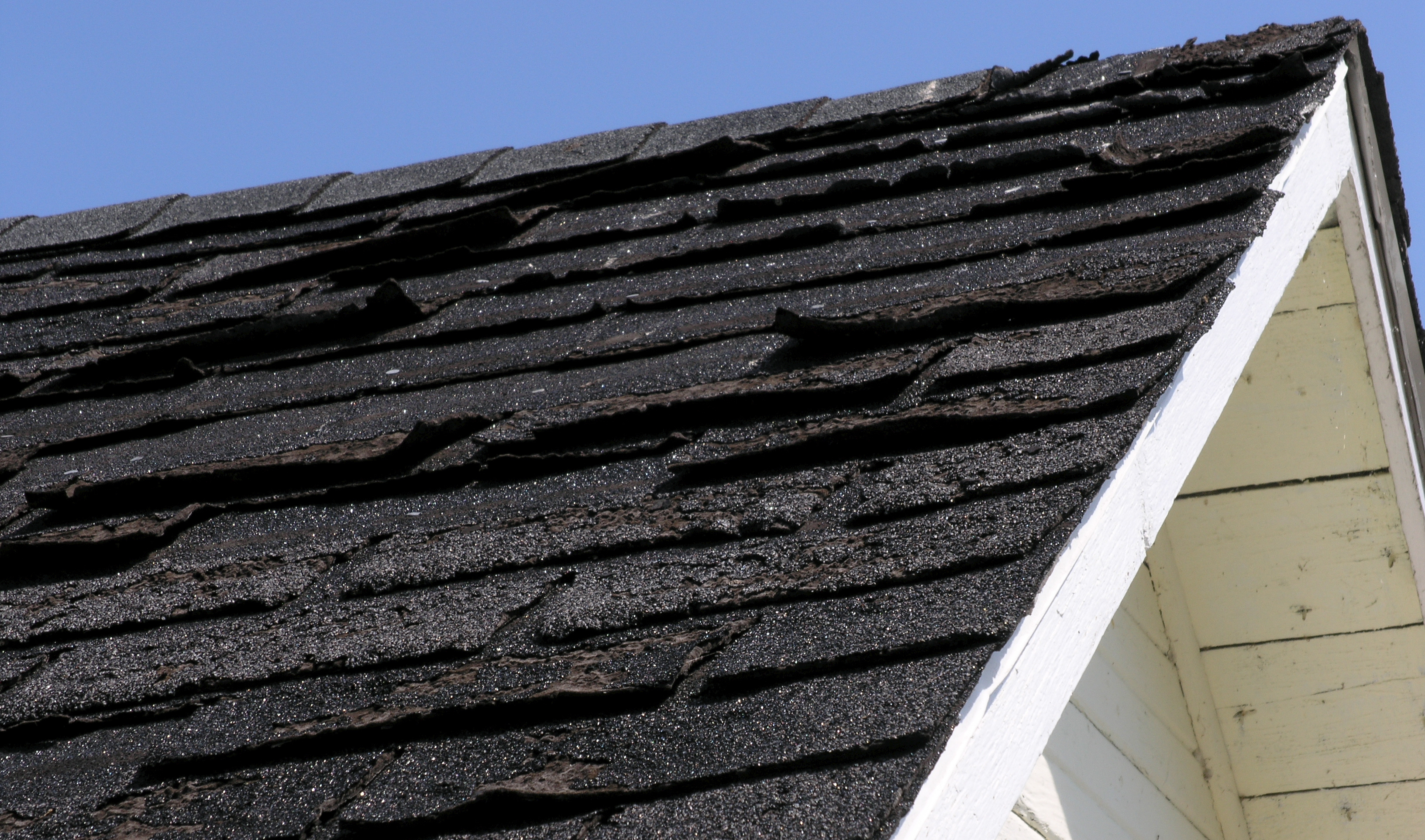damaged roof shingles